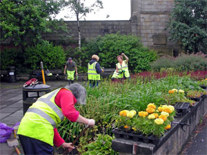 Volunteers looking after a local green space
