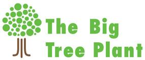 Big Tree Plant logo