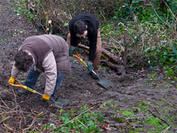 Community Green Gym volunteers