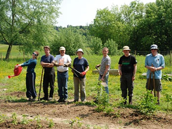 Volunteers in the TCV Essex Community Tree Nursery