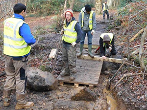 People building a small bridge