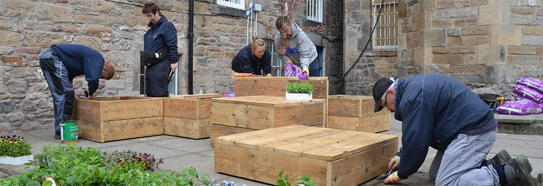 People making raised beds in Scotland