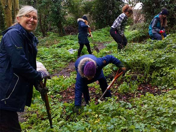 Treeplanting at Netherwood Green Woods