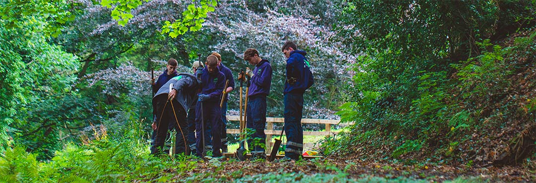 People working in a woodland
