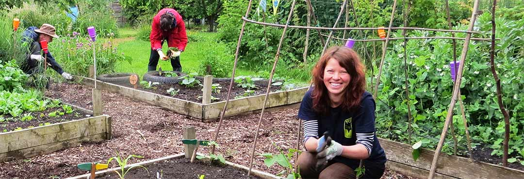 People in a vegetable garden
