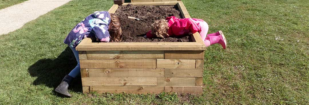 Children helping to grow vegetables