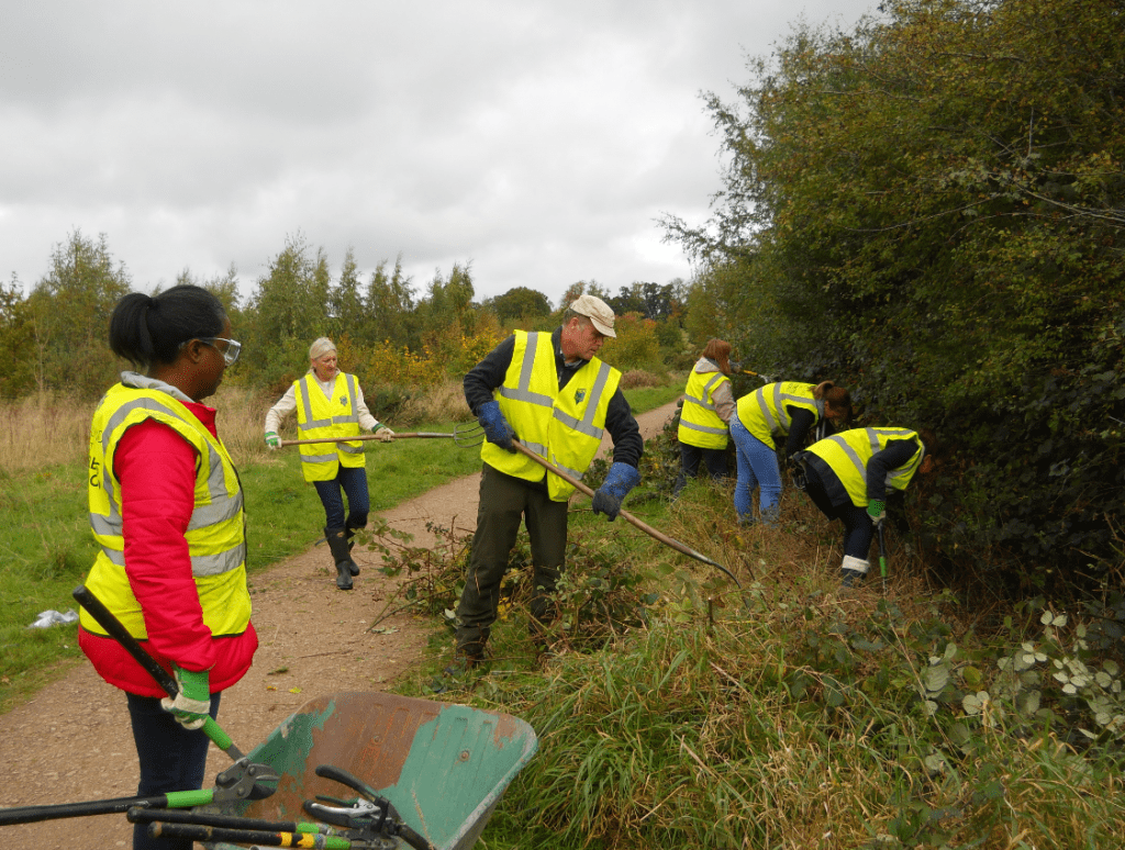 Volunteers clearing out a ditch