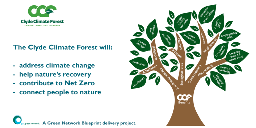 The Clyde Climate Forest will:  Address Climate change help nature's recovery contribute to Net Zero connect people to nature