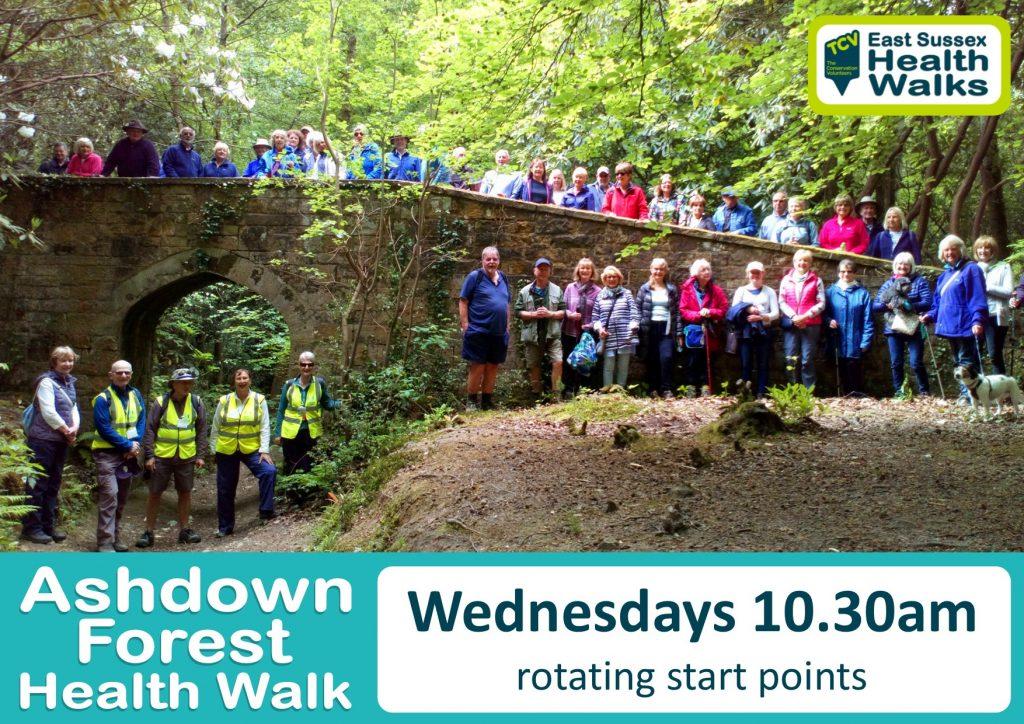 Ashdown Forest health walk